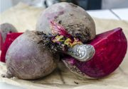 beetroot | all vegetable's name