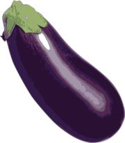 eggplant | all vegetable's name