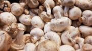 Mushroom | Vegetable name in English-Hindi