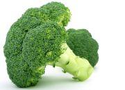 broccoli | vegetable name