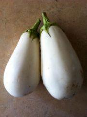 white eggplant | vegetable name