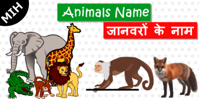 animals name in english hindi