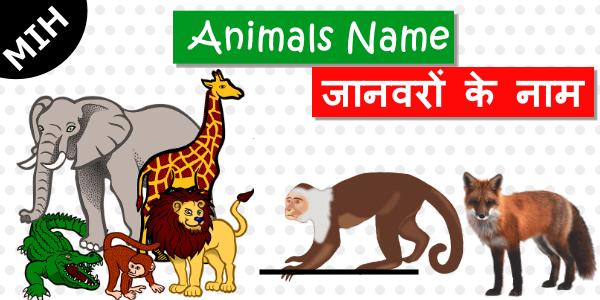 animals name in english hindi