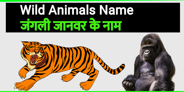 wild animals in hindi english list