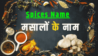 spices name in hindi english