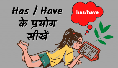 use of has and have in hindi