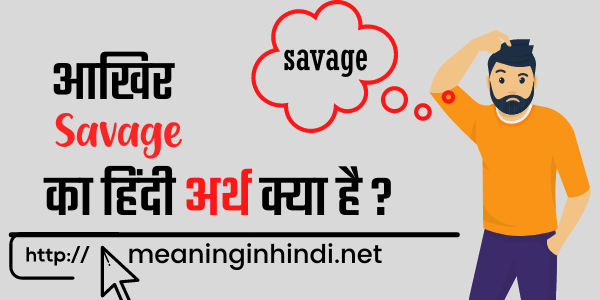 savage meaning in hindi